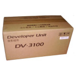 DV-3100